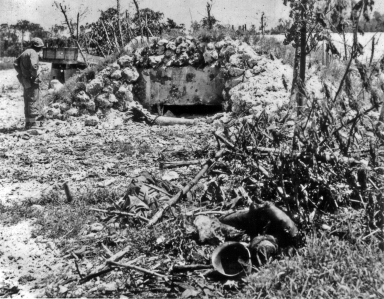 A marine inspects a well-built bunker, whose inhabitants have been dragged out and dumped in the brush.