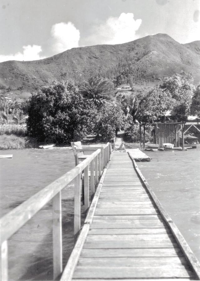 Kokokahi from the dock.