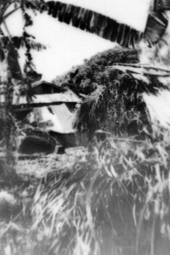 Searching villages was a new experience for 1/24; the Marines quickly learned to notice everything from buildings...