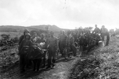 """""""The animals' worth was amply demonstrated by the heavy volume of accurate fire which was never lacking when called for, and which would have been almost an impossibility without the train."""" - Lt. Stott. (Jim Rainey is leading this train; John Pope joins them on a """"liberated"""" bicycle.)"""