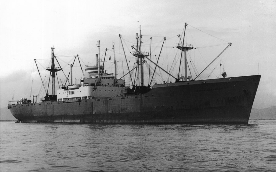 Few, if any, profile shots of the SS Robin Wentley exist. This is the SS Robin Sherwood, a MARCOM Type C2-S freighter, of the same class. Photo linked from the 604th Engineer Camouflage Battalion.