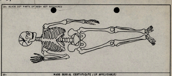 Skeletal diagram of X-64. 1950.