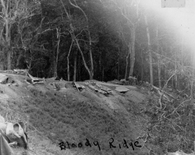 """Bloody Ridge,"" one of the most infamous battlefields of Guadalcanal, seen about a month after the action that gave it its name."